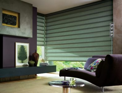 Roman Shades Living Room by Hunter Douglas-min