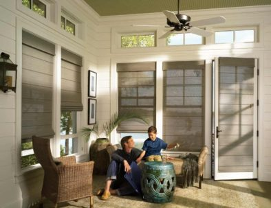 Screen Roman Shades Living Room by Hunter Douglas-min